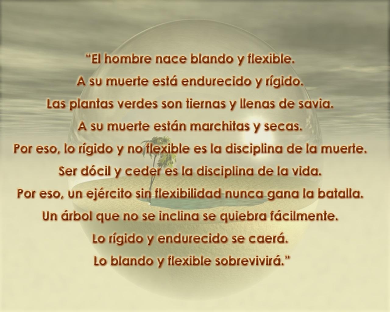 <h2>Nosotros</h2>